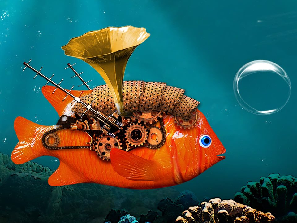 Plink - Bande de poissons